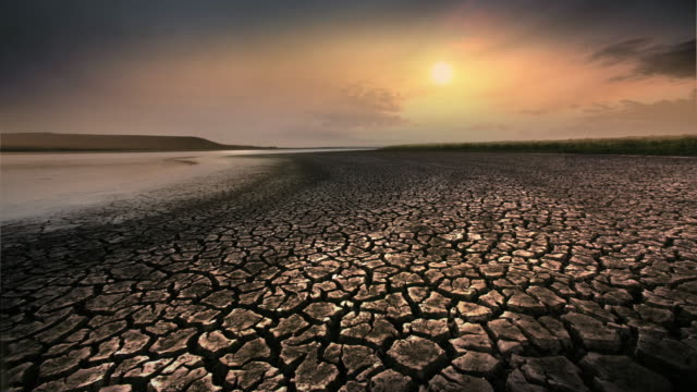dry, cracked earth during summer drought at sunset, california - arid stock videos & royalty-free footage