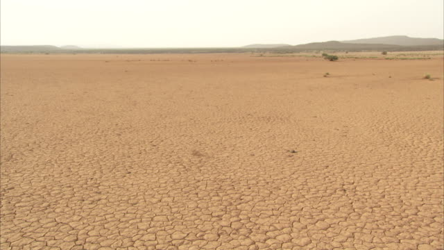 dry, cracked earth stretches out towards the horizon. available in hd. - cracked stock videos & royalty-free footage