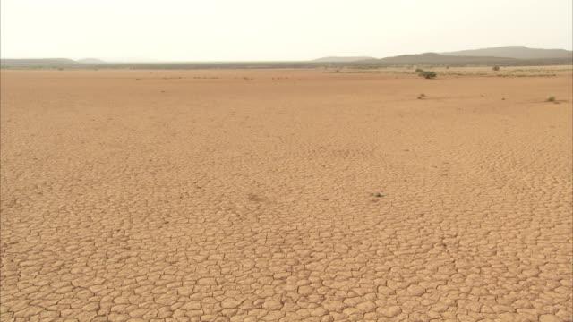 vídeos de stock e filmes b-roll de dry, cracked earth stretches out towards the horizon. available in hd. - rachado
