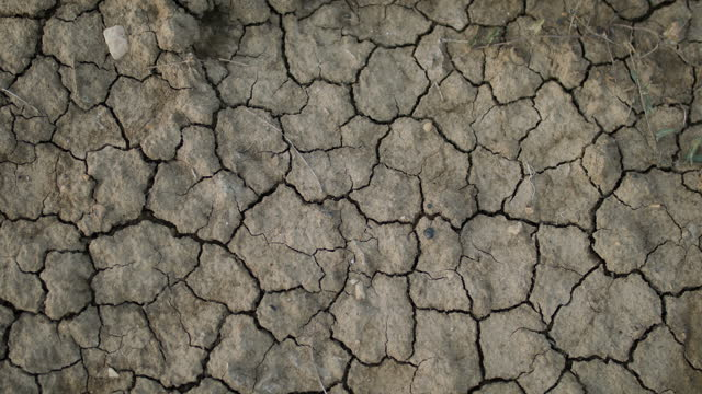 dry cracked earth - natural pattern stock videos & royalty-free footage