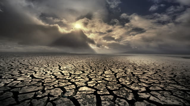 vidéos et rushes de dry, cracked earth wtih rain, california - land