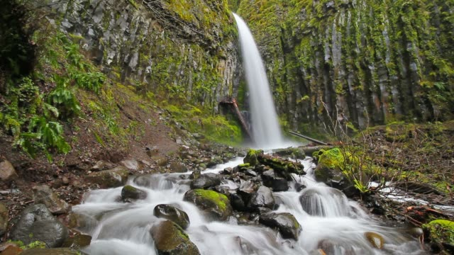 dry creek falls in spring - columbia river gorge stock videos & royalty-free footage