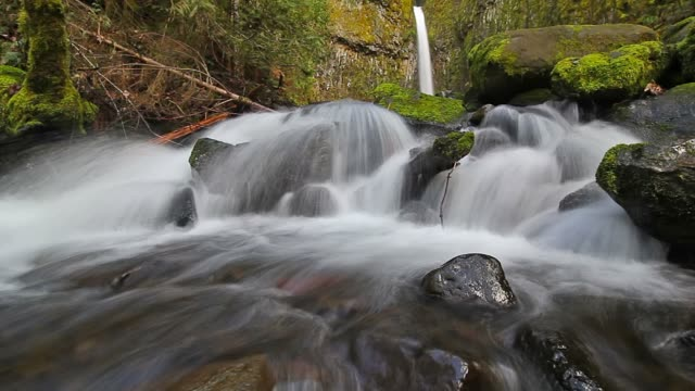 dry creek falls - columbia river gorge stock videos & royalty-free footage