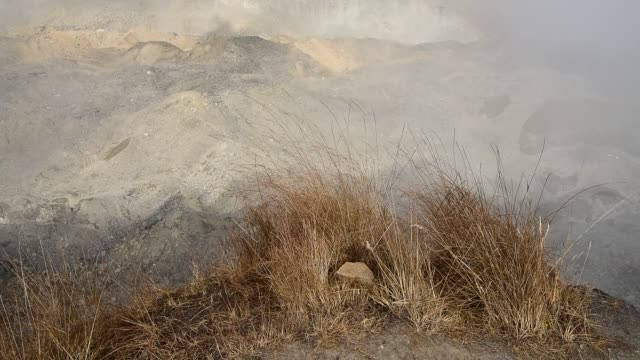 dry grass swaying in wind on the cliff with clouds - annapurna range stock videos and b-roll footage