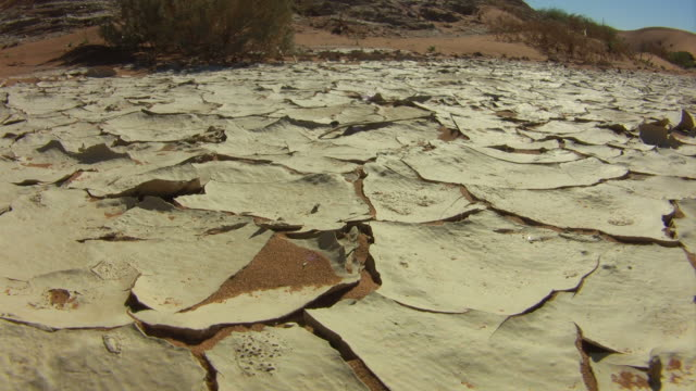 Dry ground_trockener_Boden