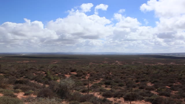 WS PAN Dry karoo with river in the distance/ Western Cape/ South Africa