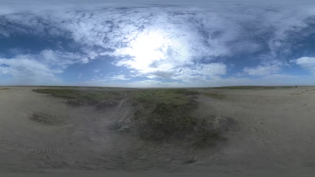 dry river bed with dust blowing past with zebra in the distance - herde stock-videos und b-roll-filmmaterial