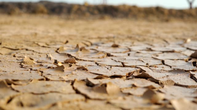 dry soil and drought - surface level photos stock videos & royalty-free footage