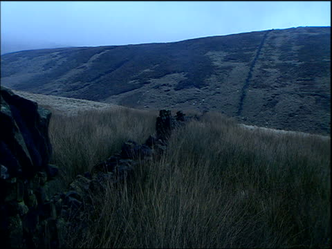 stockvideo's en b-roll-footage met dry stone wall surrounded with long grasses on moors derbyshire - derbyshire