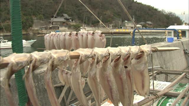 drying fish: long shot - flounder stock videos & royalty-free footage