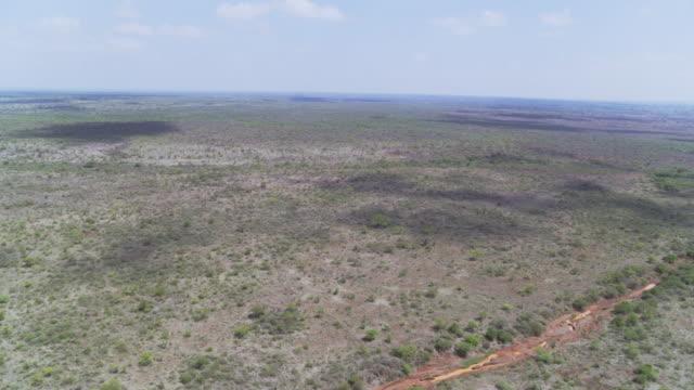 drylands below mount kilimanjaro, tanzania, east africa - plain stock videos & royalty-free footage