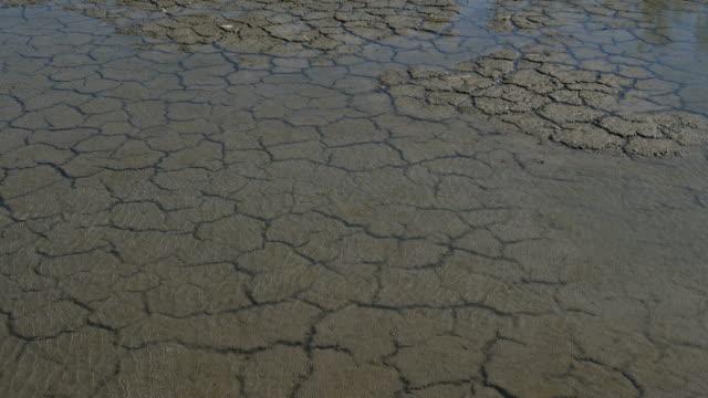 dryness, southern france, occitanie, france - 乾燥気候点の映像素材/bロール