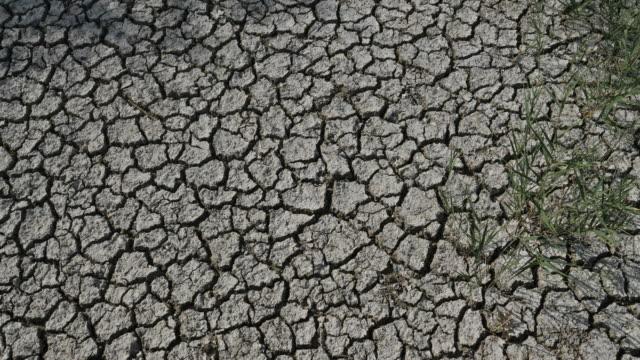 vidéos et rushes de dryness, southern france, occitanie, france - sec