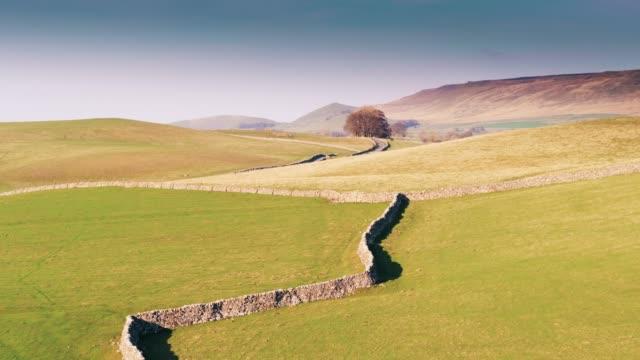 vídeos y material grabado en eventos de stock de muros de pircas alrededor de los campos de ovejas en valles de yorkshire - drone tiro - yorkshire