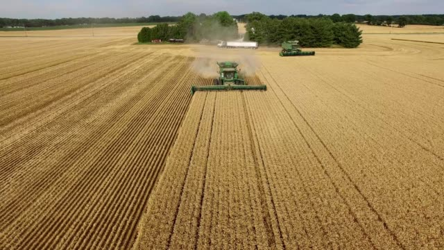 stockvideo's en b-roll-footage met dual combines in ohio farmland - ohio
