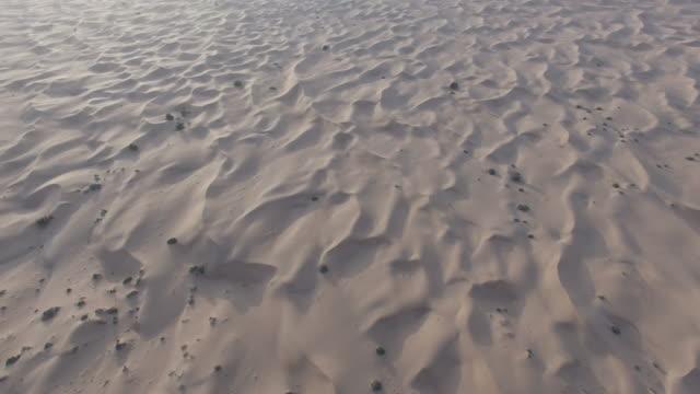 Dubai, Desert