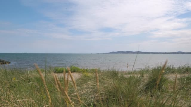 dublin bay viewed from long grass at the shelly banks - catherine macbride stock videos & royalty-free footage