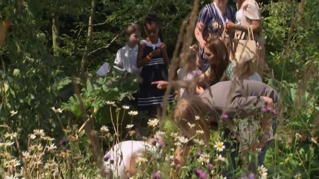 duchess of cambridge attends hampton court flower show; england: surrey: hampton court palace: ext catherine, duchess of cambridge and children on... - treasure hunt stock videos & royalty-free footage
