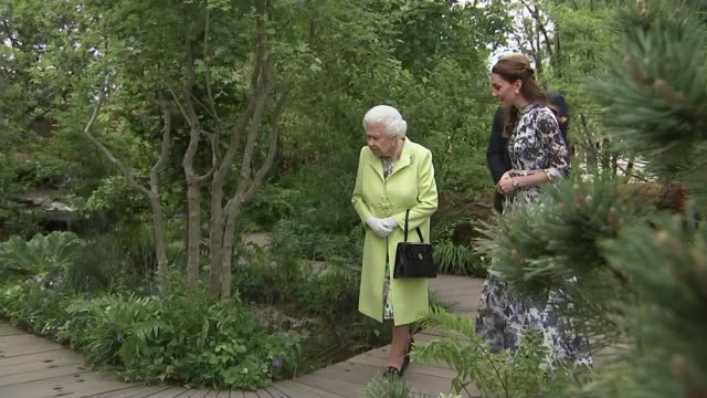 duchess of cambridge helps design garden for chelsea flower show england london kensington chelsea chelsea royal hospital chelsea chelsea flower show... - chelsea flower show stock videos & royalty-free footage