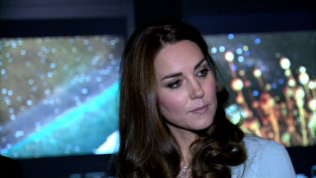 duchess of cambridge makes first public appearances since pregnancy announcement; england: london: natural history museum: ext / night ** beware... - spielkandidat stock-videos und b-roll-filmmaterial