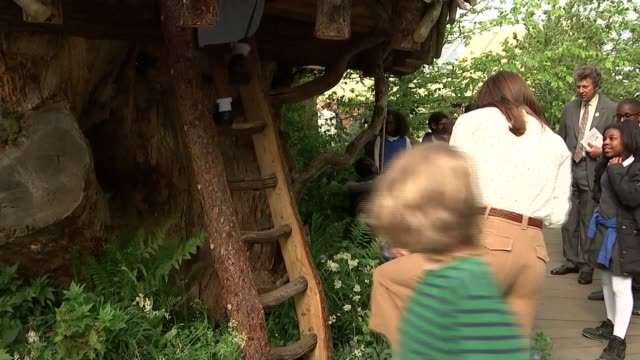 duchess of cambridge visits chelsea flower show england london chelsea catherine down from treehouse / duchess of cambridge and children in garden - chelsea flower show stock videos & royalty-free footage