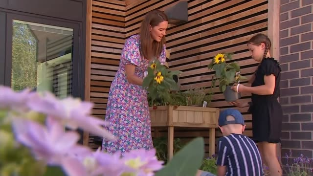 duchess of cambridge visits children's hospice england norfolk katherine duchess of cambridge speaking to children about plants and fence posts in... - handful stock videos & royalty-free footage