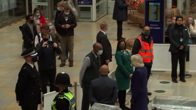duchess of cornwall and matt hancock meet medical detection dogs at paddington station; england: london: paddington station: int medical detection... - stroking stock videos & royalty-free footage