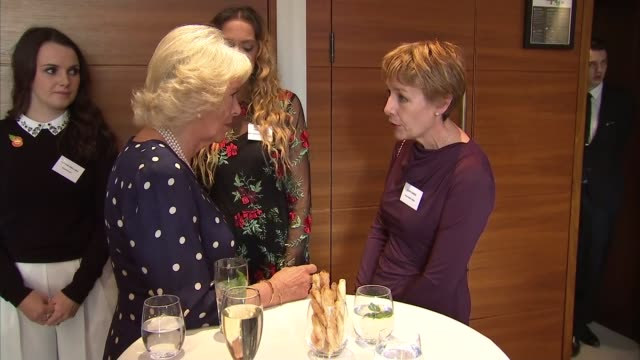 duchess of cornwall attends women of the year lunch england london intercontinental hotel photography*** camilla duchess of cornwall arrival and... - sandi toksvig stock videos & royalty-free footage
