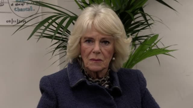 duchess of cornwall has visited a barnardo's centre in north london to meet with staff and young ambassadors of the charity. the duchess took part in... - コーンウォール公爵夫人 カミラ点の映像素材/bロール