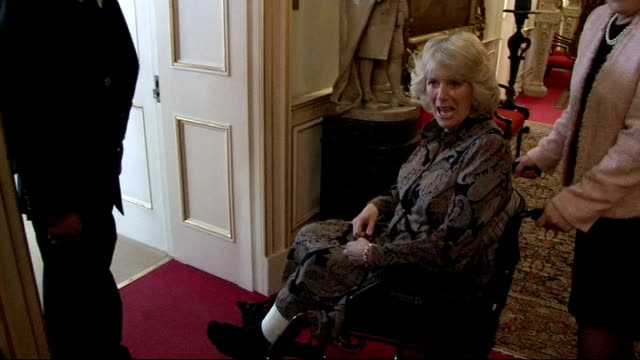 duchess of cornwall hosts reception for ebony horse club; england: london: clarence house: int **flash photography throughout clip** camilla, duchess... - critic stock videos & royalty-free footage