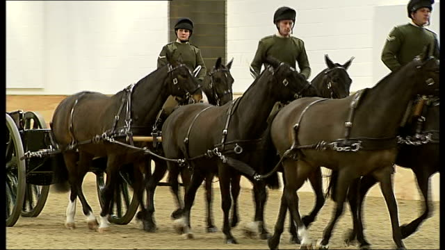 duchess of cornwall visits king's troop royal horse artillery in woolwich camilla along into equestrian training facility / camilla on podium... - royal horse artillery stock videos and b-roll footage