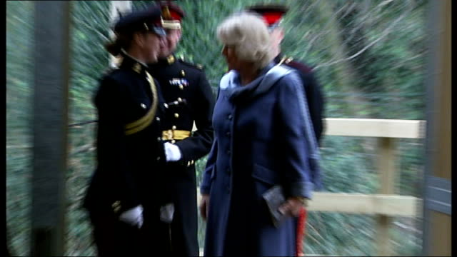 duchess of cornwall visits king's troop royal horse artillery in woolwich england london woolwich ext camilla duchess of cornwall along in horsedrawn... - polishing stock videos & royalty-free footage