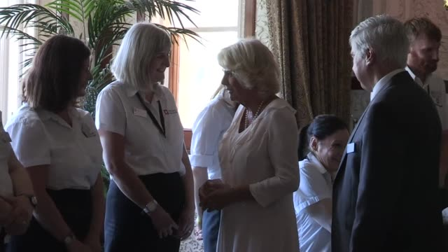 vidéos et rushes de duchess of cornwall visits osborne house with dame judi dench england isle of wight cowes osborne house photography*** ornate ceiling in osborne... - cowes