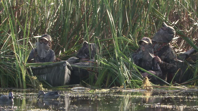 duck hunters wear camouflage as they crouch among reeds on the edge of a lake. - 鳥を狩る点の映像素材/bロール