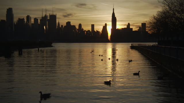 ducks swimming in the hudson river as the sun rises behind the silhouette of the empire state building, 34th street and the rest of the manhattan skyline - 34th street stock videos and b-roll footage