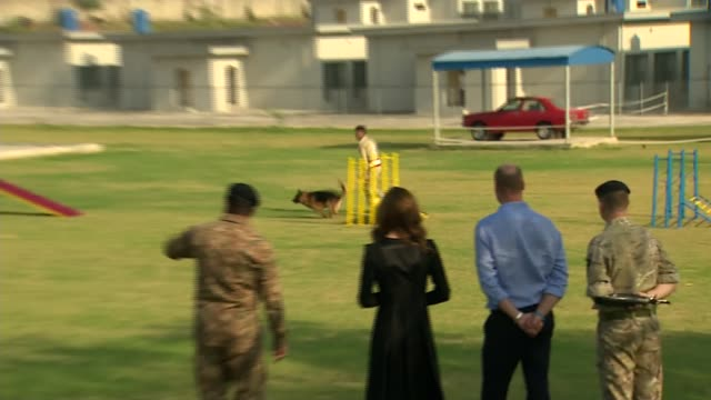 duke and duchess of cambridge pakistan tour: day 5: army canine centre visit; pakistan: islamabad: army canine centre: ext wide prince william, duke... - 5日目点の映像素材/bロール