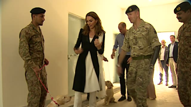 duke and duchess of cambridge pakistan tour day 5 army canine centre visit pakistan islamabad army canine centre ext union jack flag and pakistani... - pakistani flag stock videos & royalty-free footage