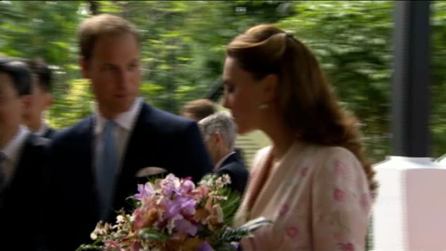 duke and duchess of cambridge sue french magazine over topless photographs t11091234 / tx botanic gardens ext william and catherine along on arrival... - shirtless stock videos & royalty-free footage