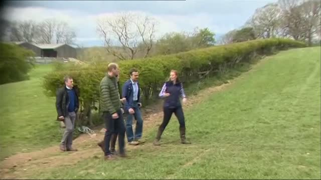 duke and duchess of cambridge visit manor farm in county durham; england: county durham: near darlington: little stainton: manor farm: ext **picture... - farm stock videos & royalty-free footage