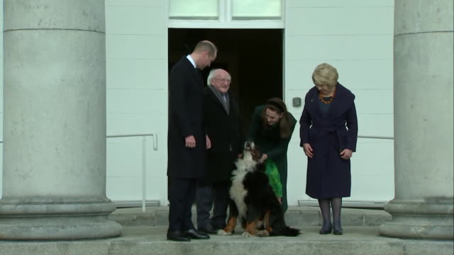 duke and duchess of cambridge, with irish president michael d higgins and his wife sabina coyne, pose for photos outside the official residence on... - messing about stock videos & royalty-free footage