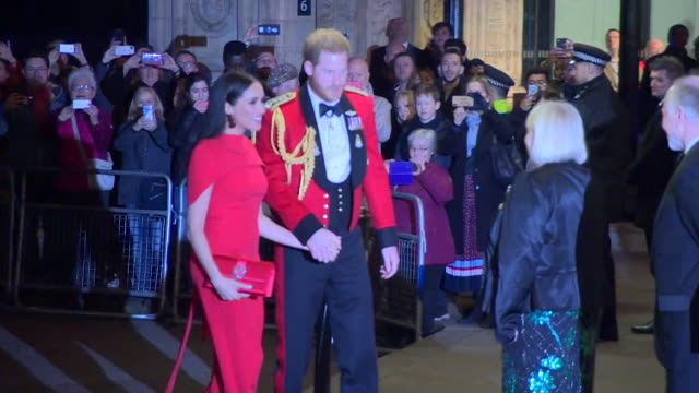 duke and duchess of sussex arrive at the royal albert hall for the mountbatten festival of music - royal albert hall点の映像素材/bロール