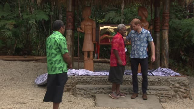 vidéos et rushes de harry visits coloisuva forest reserve fiji coloisuva forest reserve prince harry duke of sussex unveiling plaque for queen's commmonwealth canopy... - canopy tour