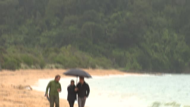 duke and duchess of sussex new zealand tour abel tasman national park visit new zealand wellington abel tasman national park prince harry duke of... - meghan duchess of sussex stock videos and b-roll footage