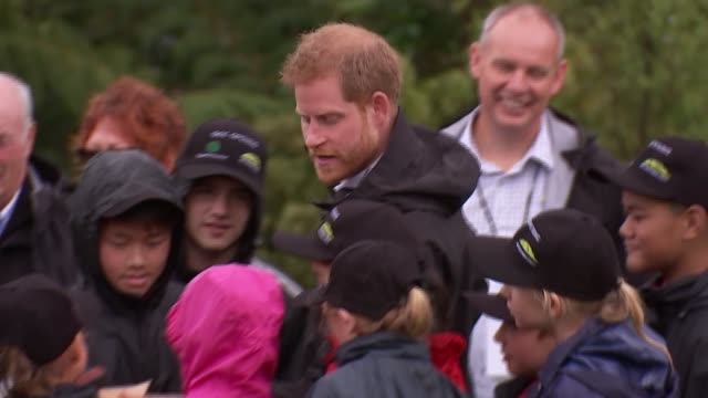 duke and duchess of sussex new zealand tour north shore visit and 'welly wanging' new zealand auckland north shore prince harry duke of sussex and... - meghan duchess of sussex stock videos and b-roll footage