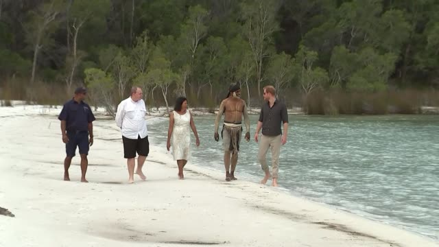 vídeos y material grabado en eventos de stock de duke and duchess of sussex visit fraser island australia fraser island prince harry duke of sussex and meghan duchess of sussex visit beach on fraser... - plant part