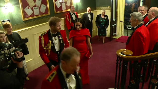 vídeos de stock, filmes e b-roll de duke and duchess of sussex walk up the stairs in the royal albert hall as they arrive for the mountbatten festival of music - royal albert hall