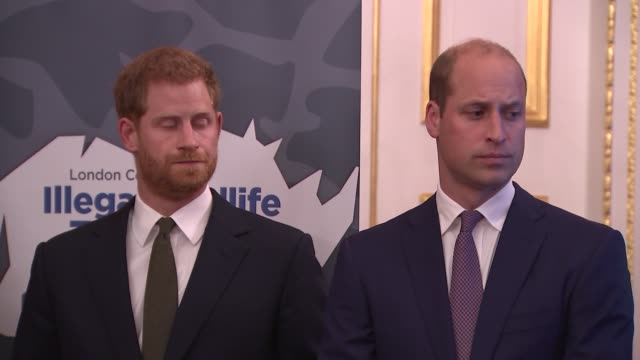 duke of cambridge and duke of sussex attend illegal wildlife trade conference reception england london st james' palace prince harry and prince... - ウィリアム王子点の映像素材/bロール