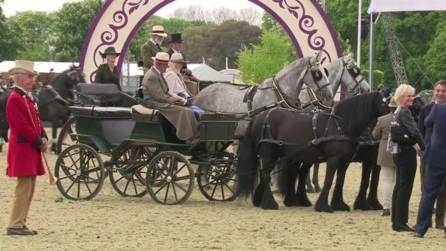 duke of edinburgh driving a carriage at windsor horse show; england: berkshire: windsor: ext various shots of prince philip driving a carriage at the... - 四輪馬車点の映像素材/bロール