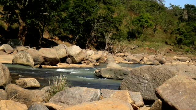 dumbravati river - valley stock videos & royalty-free footage