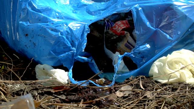 ブッシュエリアにダンプ - プラスチック汚染点の映像素材/bロール